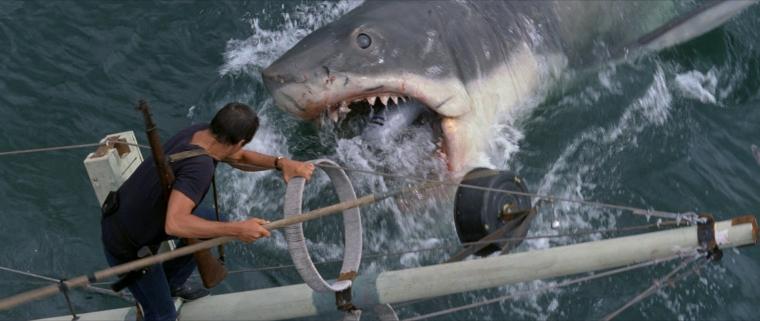 Jaws1b